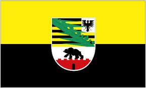 SA-flag